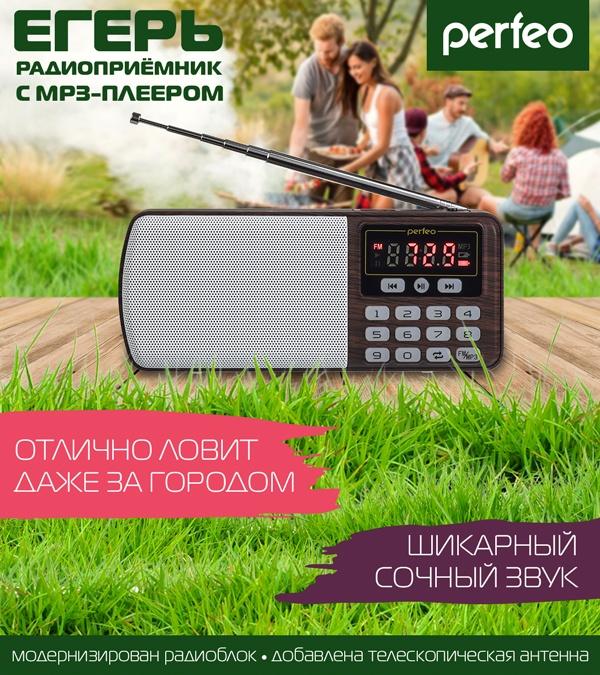 радиоприемники Perfeo i120 ЕГЕРЬ